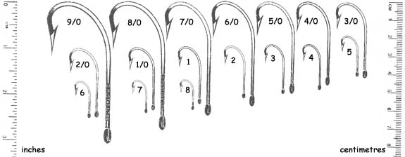 Bead Setup and Bead to Hook Sizes   BC Fishing Journal