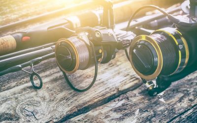 Tackle Guide: Best Spinning Reel for 2017