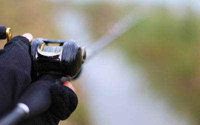 Tackle Guide: Best Baitcasting Reel for 2018