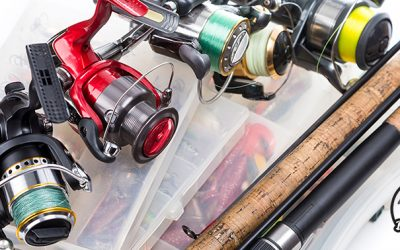 What is the Best Spinning Reel under $100