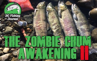 "The making of ""The Zombie Chum Awakening part 2"""