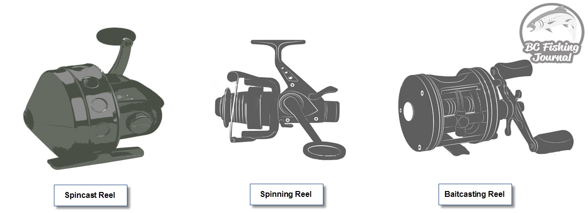 the spincast reel mimics the spinning reel spool and how it controls the  fishing line coming off and on (both have the spool facing toward rod line  guides)