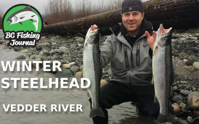 Vedder River Winter Steelhead Kickoff 2018!