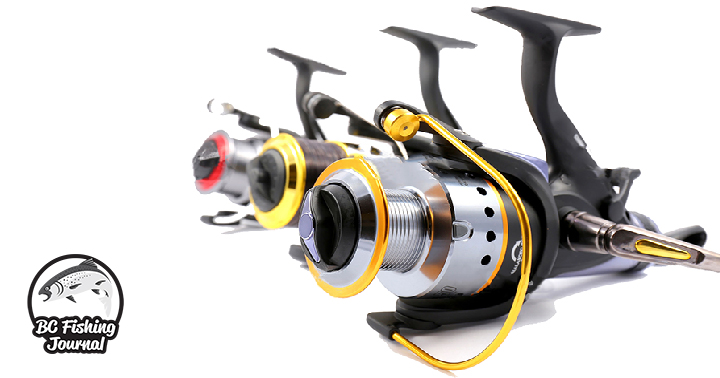 5 Best Saltwater Spinning Reels for the Money - BC Fishing